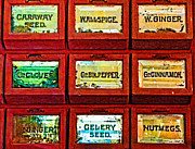 Spice Box Prints - The Spice of Life Print by Colleen Kammerer