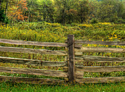 Fences Photos - The Split Rail Meadow by Benanne Stiens