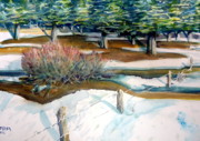 The Spring Thaw Print by Steven Holder