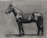 Tom Pauly Paintings - The Standardbred by Thomas Allen Pauly