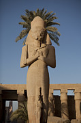 Pharaohs Prints - The Statue Of Ramses Ii In Afternoon Print by Taylor S. Kennedy