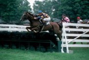 Steeplechase Race Framed Prints - The Steeplechase Framed Print by Marc Bittan