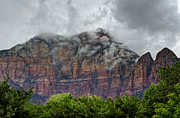 Zion National Park Posters - The Storm Clears Poster by Loree Johnson