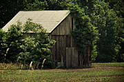 Maryland Photos - The Summer Barn by Rebecca Sherman