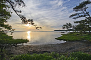 Maryland Photos - The Suns Retreat - Assateague Island - Maryland by Brendan Reals