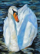 Blue Water Painting Framed Prints - The Swan Framed Print by Chris Brandley