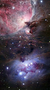 Orion Nebula Art - The Sword Of Orion by Robert Gendler