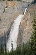 British Columbia Prints - The Takakaw Falls Of Yoho National Print by Philippe Widling