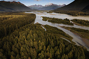 Tongass Posters - The Taku River Is A Braided River Poster by Melissa Farlow