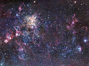 Tarantula Prints - The Tarantula Nebula Print by Robert Gendler