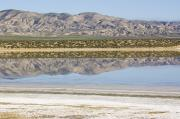 Carrizo Plain Prints - The Temblor Range Is Reflected In Soda Print by Rich Reid