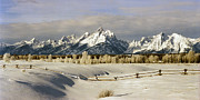 Split Rail Fence Photo Originals - The Teton Range by David Blankenship