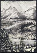 Elk Drawings - The Tetons by Dawn Senior-Trask