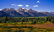 Superb Framed Prints - The Tetons II Framed Print by Robert Bales