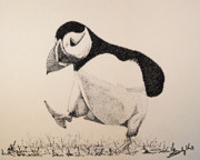 Puffin Drawings Posters - The Thinker Poster by Saundra Smoker