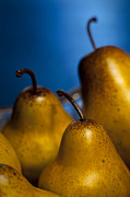 Indoor Still Life Photos - The Three Pears by Scott Norris