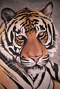 Game Pastels Framed Prints - The Tiger Framed Print by Annie Seddon