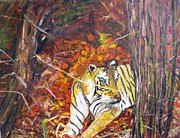 Doris Cohen Framed Prints - The Tiger  Framed Print by Doris Cohen
