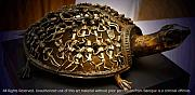 Lost-wax Casting Art - The Tortoise by Pallavi Shilpi