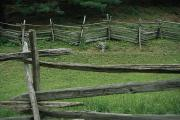 Cooperstown Posters - The Traditional Split-rail Fence Seen Poster by Stephen St. John