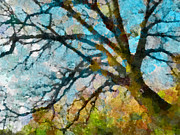 Hued Posters - The Tree of Many Colours  Poster by Steve Taylor