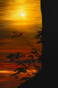 """sunset Photography"" Prints - The Tree On The Hill Print by Tom York"