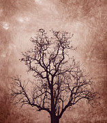 Offshoot Prints - The tree Print by Suwit Ritjaroon