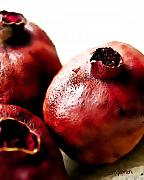 Pomegranate Posters - The Trio Poster by Barb Pearson