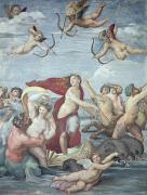 Dolphin Metal Prints - The Triumph of Galatea Metal Print by Raphael