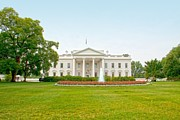 Regina Williams Art - The United States White House by Regina Williams