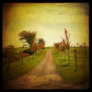 Fall Road Posters - The Unknown Path Poster by Joel Witmeyer