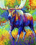 Bulls Painting Posters - The Urge To Merge - Bull Moose Poster by Marion Rose