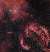 Witches Broom Prints - The Veil Nebula In The Constellation Print by John Davis