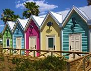 Jennifer Lamanca Kaufman - The Villages Florida