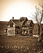 Horse And Buggy Prints - The Vintage Farm House  Print by Steve McKinzie