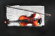 Violin Digital Art - The Violin by Dan Stone