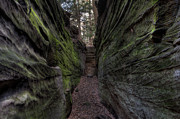 Cvnp Prints - The Walls are Closing In Print by At Lands End Photography
