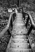 Wooden Stairs Metal Prints - The way down Metal Print by Olivier Steiner