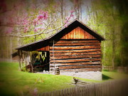 Log Cabin Art Prints - The Way It Was Print by Cindy Wright