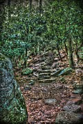 Wooden Stairs Digital Art Prints - The Way of the Gnome Print by Dan Stone