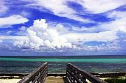 Beaches In Florida Prints - The Way to the beach 2 Print by Susanne Van Hulst
