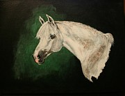 Pony Drawings Framed Prints - The Wedding Horse Framed Print by Bj Redmond