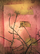 Peeling Paint Prints - The Weeds Print by Tara Turner