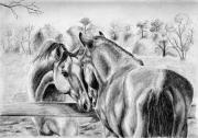 Stable Drawings - The Welcoming Committee by Anna Hagee