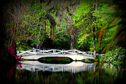 Landmarks Acrylic Prints - The white bridge in Magnolia Gardens SC Acrylic Print by Susanne Van Hulst