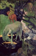 The Horse Framed Prints - The White Horse Framed Print by Paul Gauguin