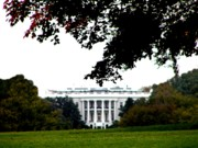 White House Digital Art - The White House by Bill Cannon