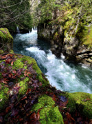 White Salmon River Prints - The White Salmon River Print by Kevin Felts