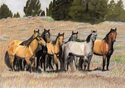 Horse Pastels Originals - The Wild Bunch by Nichole Taylor