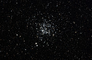 Star Clusters Posters - The Wild Duck Cluster Poster by Rolf Geissinger